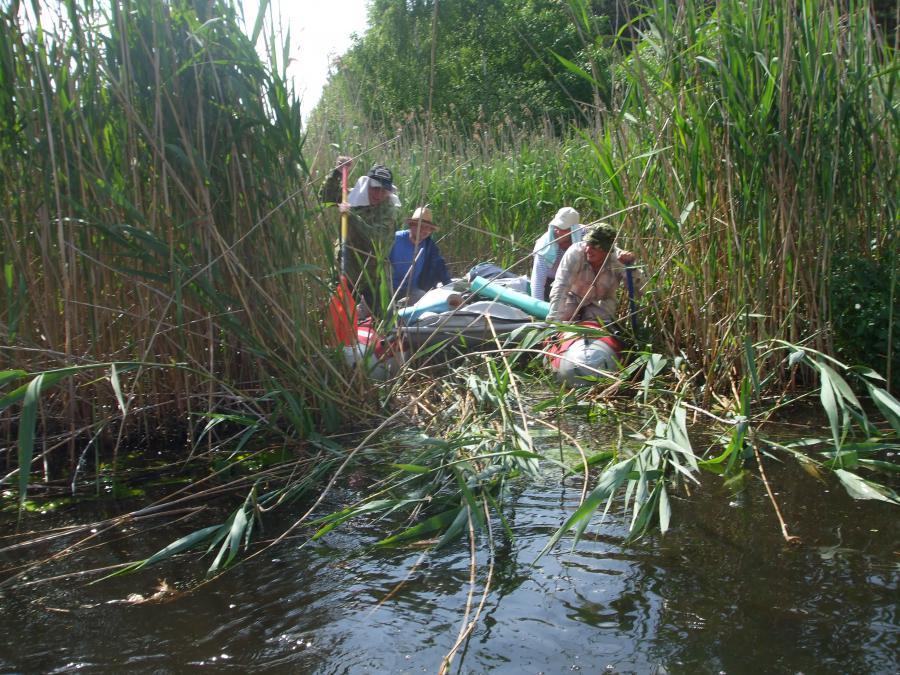 рыбалка в брестской области на реке ясельда видео